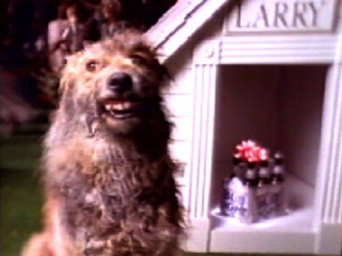 Bud Light Commercial Dog Show Larry